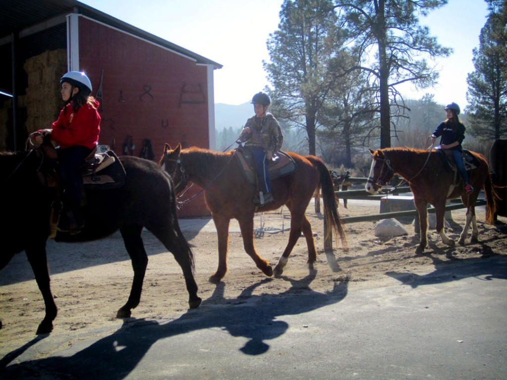 horseback-outdoor-education