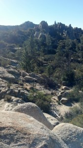 Here's the view from one of our local trails in the San Bernardino National Forest. Tough to beat!