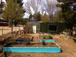 New garden look!