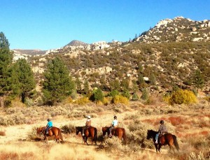 Some students are enjoying the fall colors and beautiful landscape during their horseback ride!