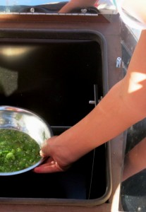 Solar Salsa, cooked in our solar oven